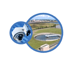 View our live webcam for our project upgrades!